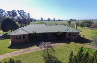 Picture of Wagga Wagga NSW 2650
