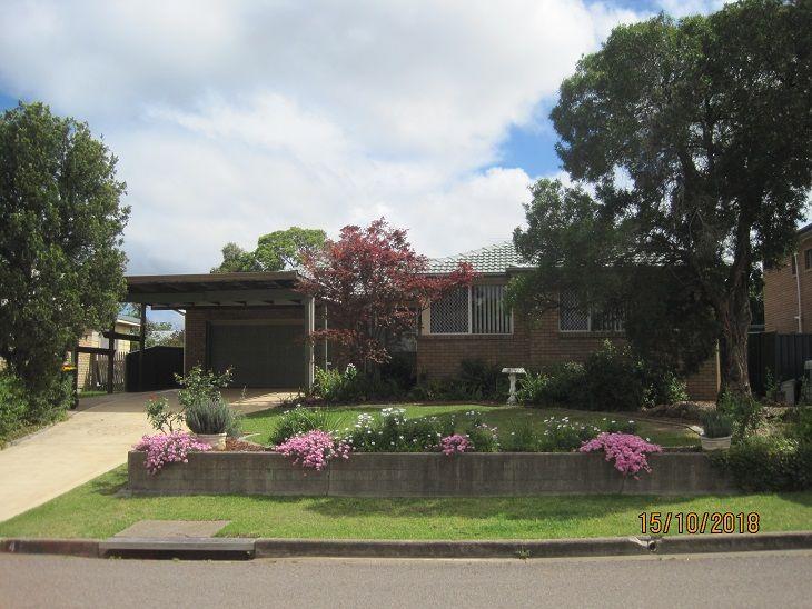 4 WOODWARD AVE, Singleton NSW 2330, Image 0