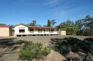 Picture of 3702 Golden Highway, Gungal NSW 2333