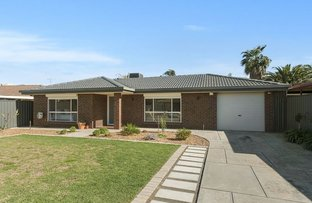 Picture of 6 Reynolds Drive, Paralowie SA 5108