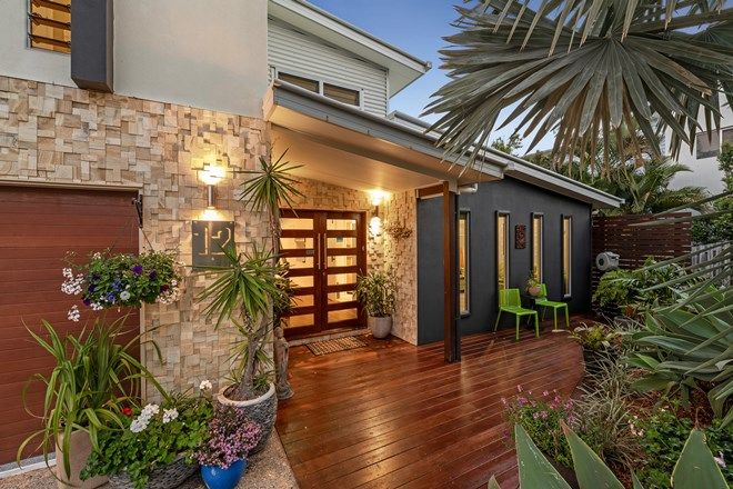 Picture of 12 Berry Court, MOUNT COOLUM QLD 4573