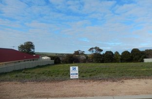 Picture of 32 Clinton Road, Maitland SA 5573
