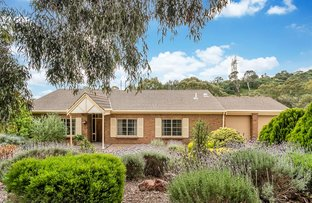 Picture of 13 Edmund Wright Avenue, Auldana SA 5072