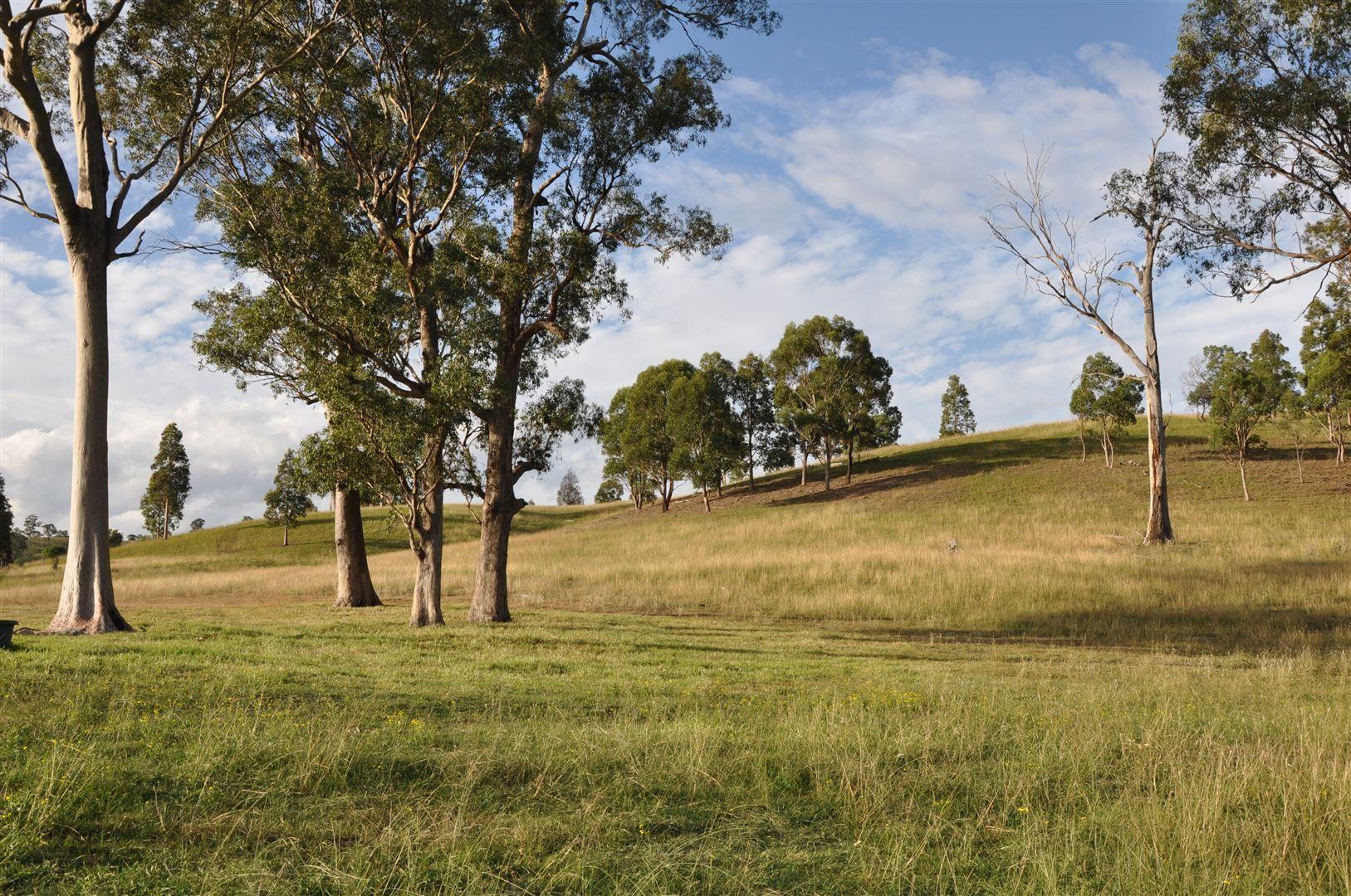 816 Muscle Creek Road, Muswellbrook NSW 2333, Image 1