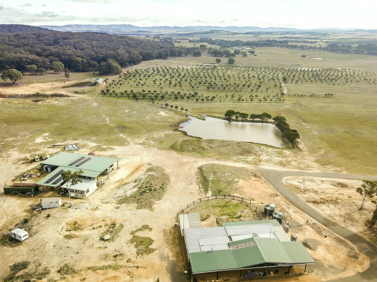 Willow Glen Road, Lower Boro NSW 2580, Image 0