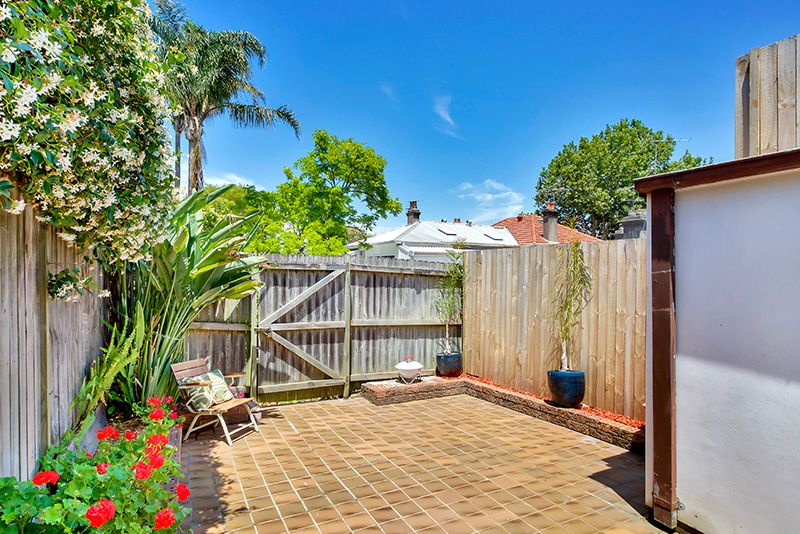 5 Walter  Street, Bondi Junction NSW 2022, Image 1