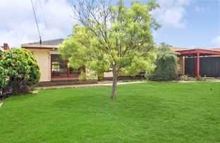 Picture of 14 Dundee Road, Modbury SA 5092
