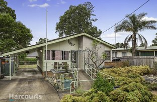 Picture of 38 Magnolia Street, North St Marys NSW 2760