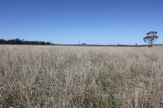 Picture of 'Glenrock' 874 Gournama Rd, WARIALDA NSW 2402
