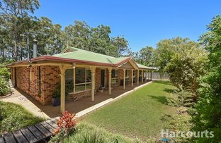 Picture of 15 Blackbutt Court, Burpengary QLD 4505