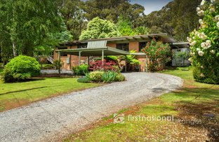 Picture of 14 Macclesfield Road, Avonsleigh VIC 3782
