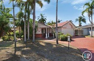 Picture of 17 Sundew Close, Kirwan QLD 4817