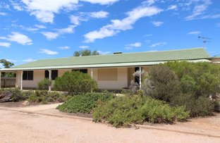 Picture of 4 Whiting Street, Stirling North SA 5710