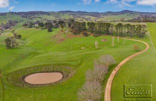 Picture of 334 PATTERSONS ROAD, Springfield VIC 3434