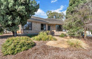 Picture of 18 St Peters Terrace, Willunga SA 5172