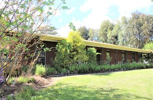 Picture of 19 Booth Street, Tumbarumba NSW 2653