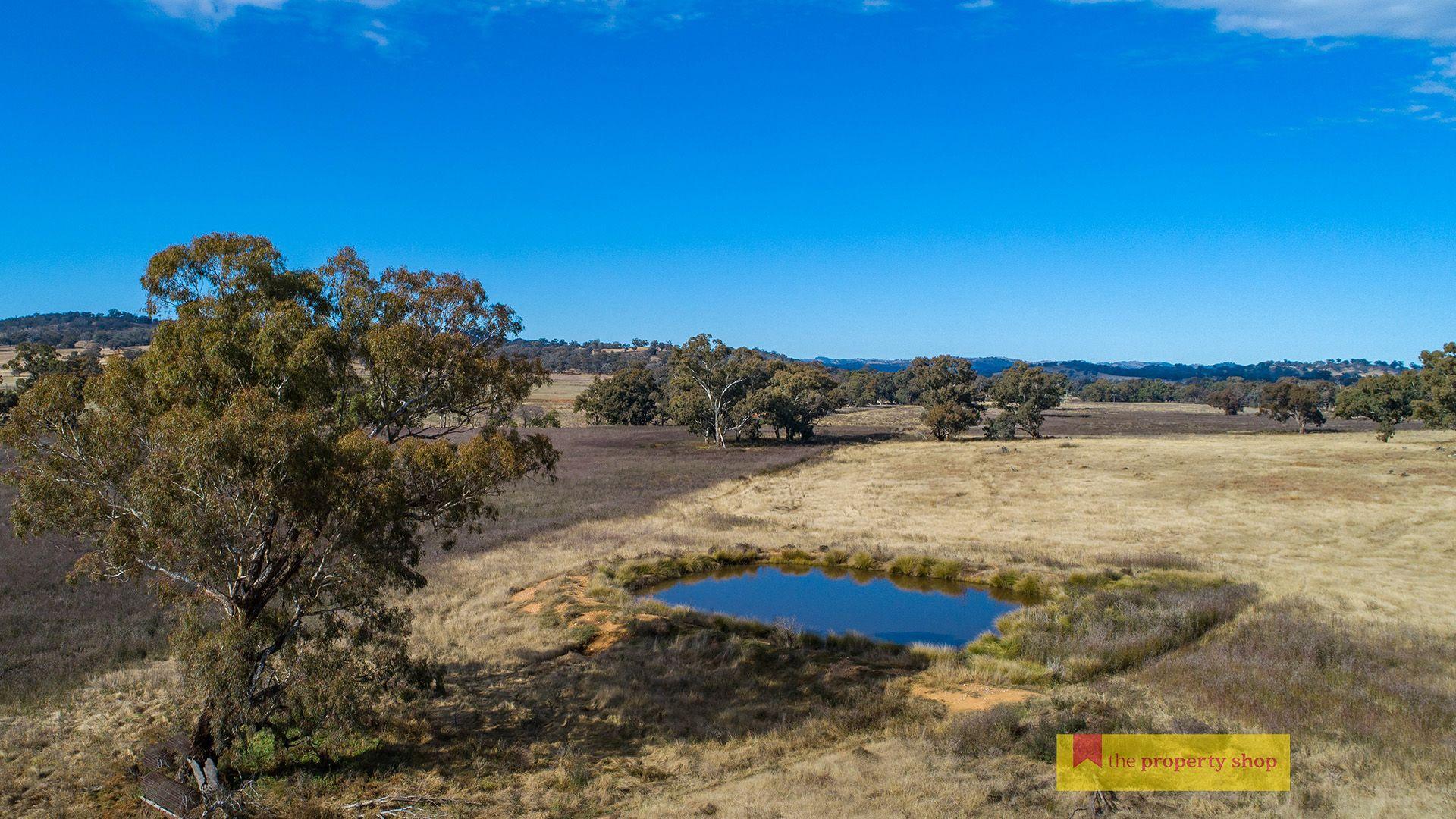 298 Gollan Road, Mudgee NSW 2850, Image 2