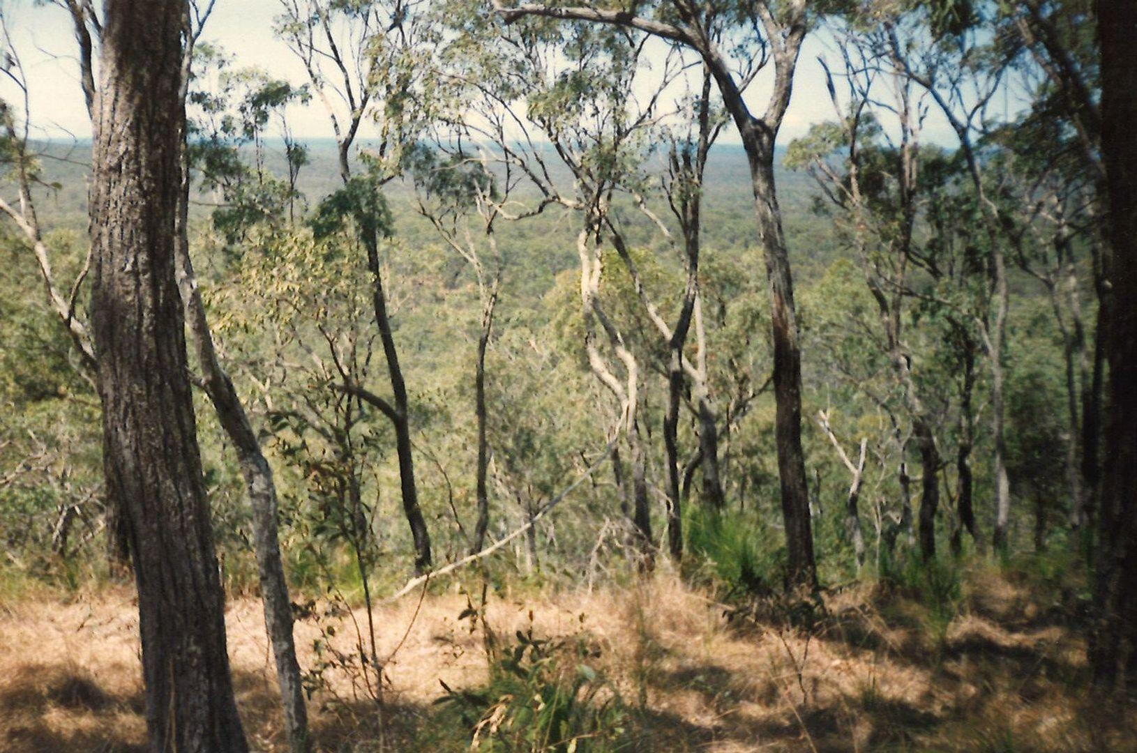 Lot 10 Muller Road, Baffle Creek QLD 4674, Image 1