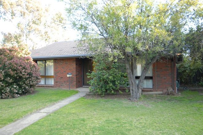 Picture of 9/356 WOOD STREET, DENILIQUIN NSW 2710