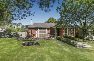 Picture of 24 Bangalay Place, Berwick VIC 3806