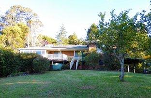 Picture of Maynards Plains Road, Dorrigo NSW 2453