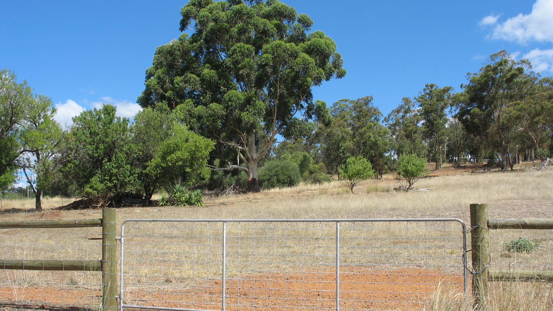 Lot 202 Werribee Road, Wundowie WA 6560, Image 1
