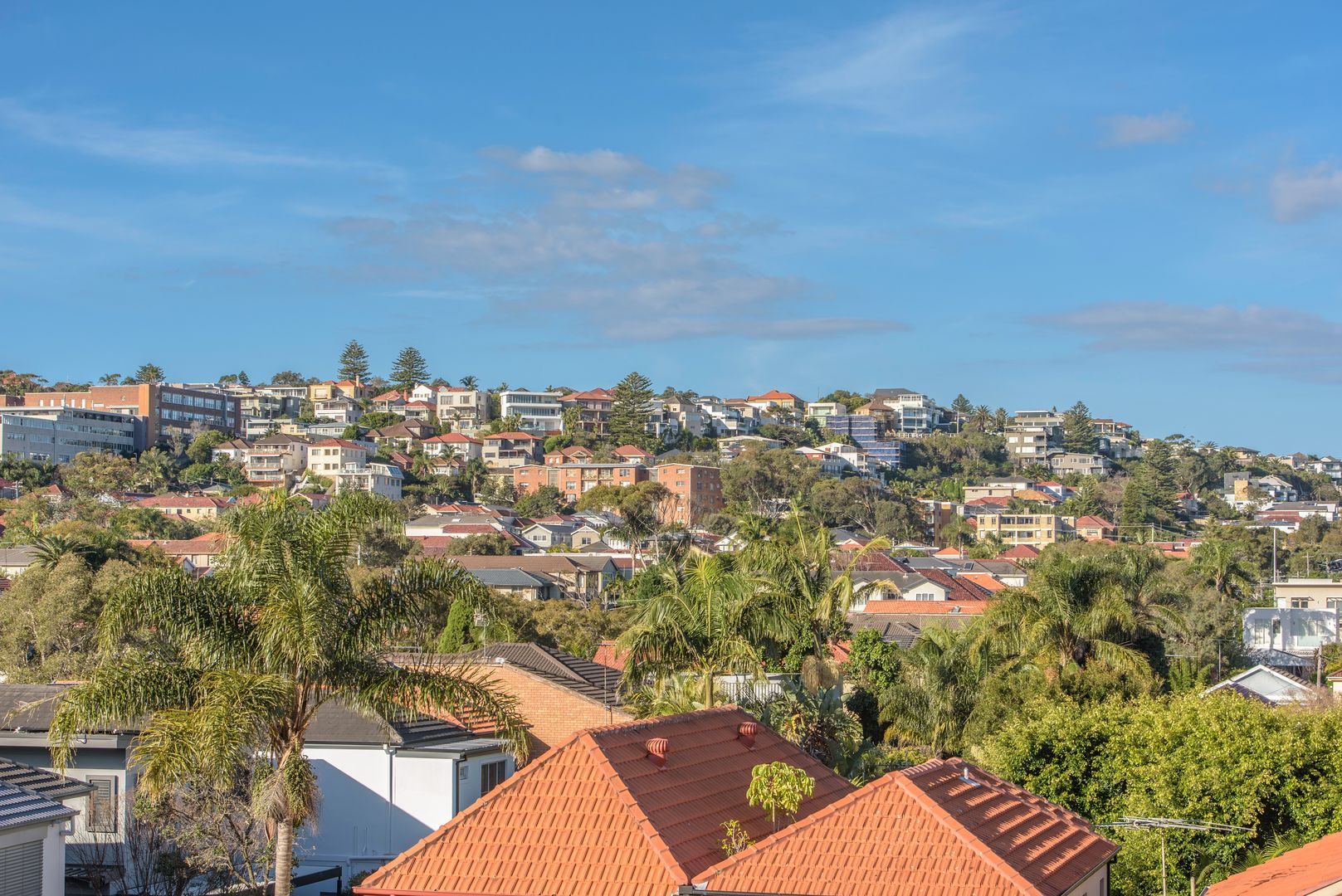 4/393 Old South Head Road, North Bondi NSW 2026, Image 0