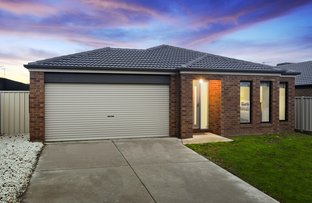 Picture of 37 Saxby Drive, Strathfieldsaye VIC 3551