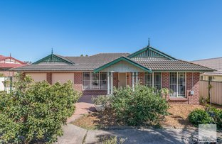 Picture of 11 Olearia Crescent, Warabrook NSW 2304