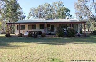 Picture of 51 Slack Drive, Emerald QLD 4720