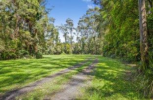 Picture of 7 Corona Lane, Glenning Valley NSW 2261