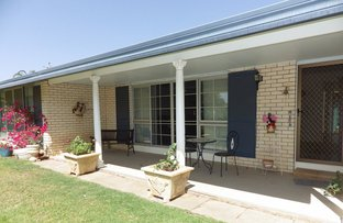 Picture of 13-15 Allen Street, Roma QLD 4455