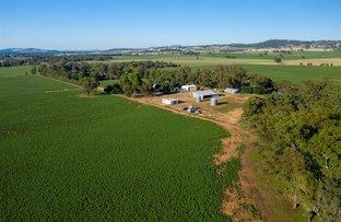 Picture of Aberfeldy Downside via, Wagga Wagga NSW 2650