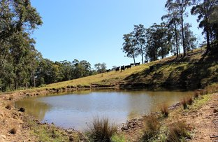 Picture of Lot 103 Watagan Creek Road, Laguna NSW 2325