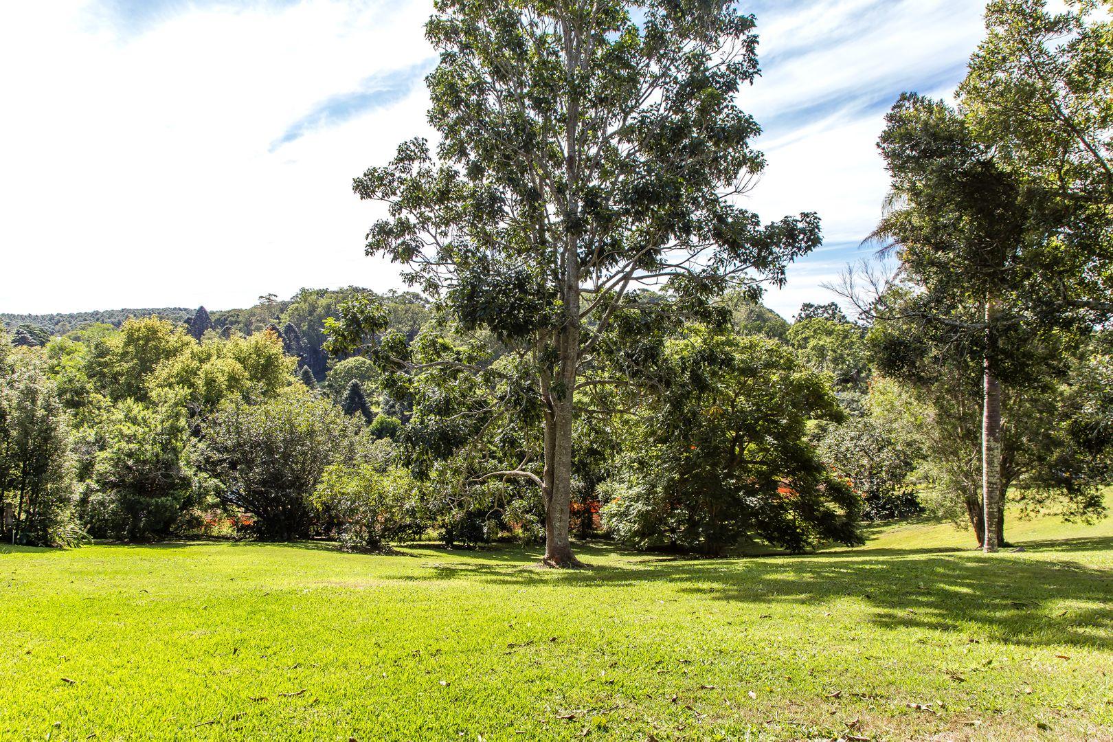 17 Western Avenue, Montville QLD 4560, Image 1