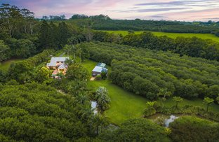 Picture of 517 Friday Hut Road, Brooklet NSW 2479