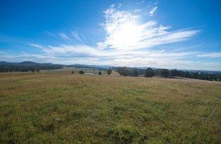 Picture of Lot 22 Wyndella Road, Lochinvar NSW 2321