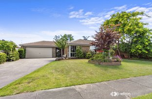 Picture of 17 Stirling Avenue, Traralgon VIC 3844