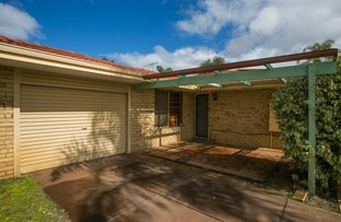 Picture of 7 Wentworth Grove, Morley WA 6062