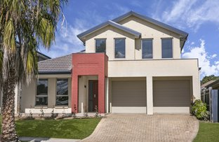 Picture of 12 Condron Circuit, Elderslie NSW 2570