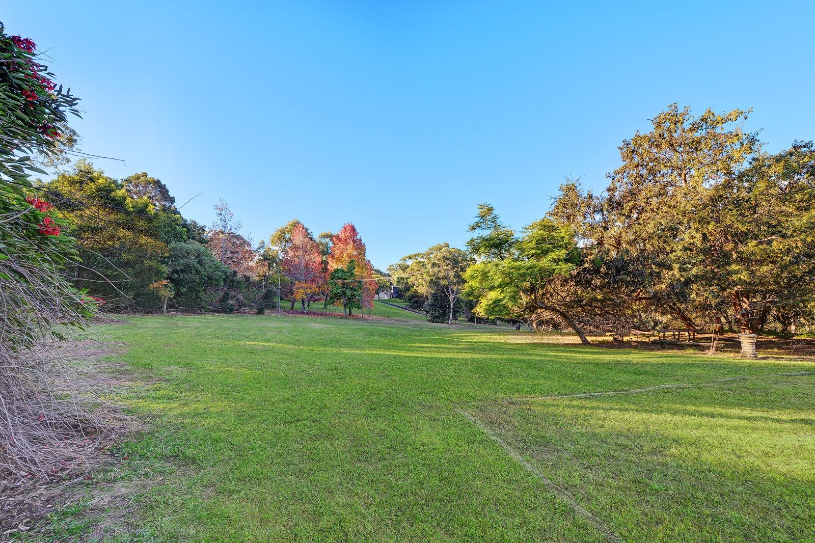Lot 1/59  Miowera Road , Turramurra NSW 2074, Image 1