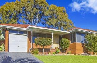 17 Eucalyptus Street, Constitution Hill NSW 2145