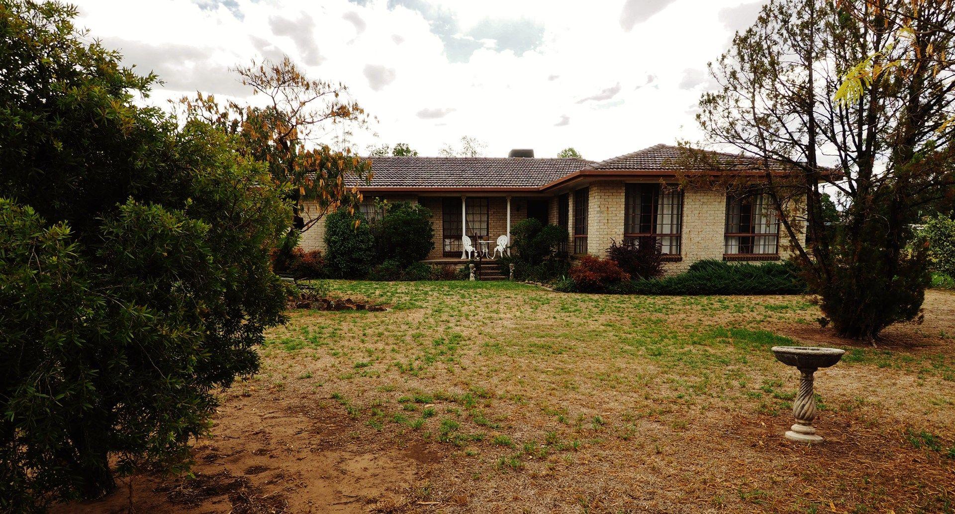 20 Gwydir Terrace, Bingara NSW 2404, Image 0