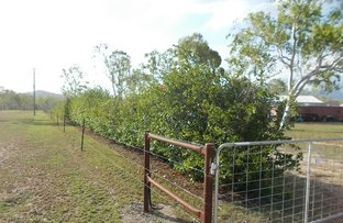 Picture of 579 Old Coach Rd, Majors Creek QLD 4816