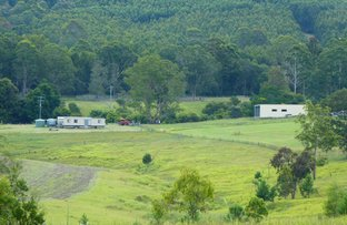 Picture of 16404 Clarence Way, Old Bonalbo NSW 2469