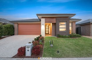 Picture of 19 Murgese Circuit, Clyde North VIC 3978