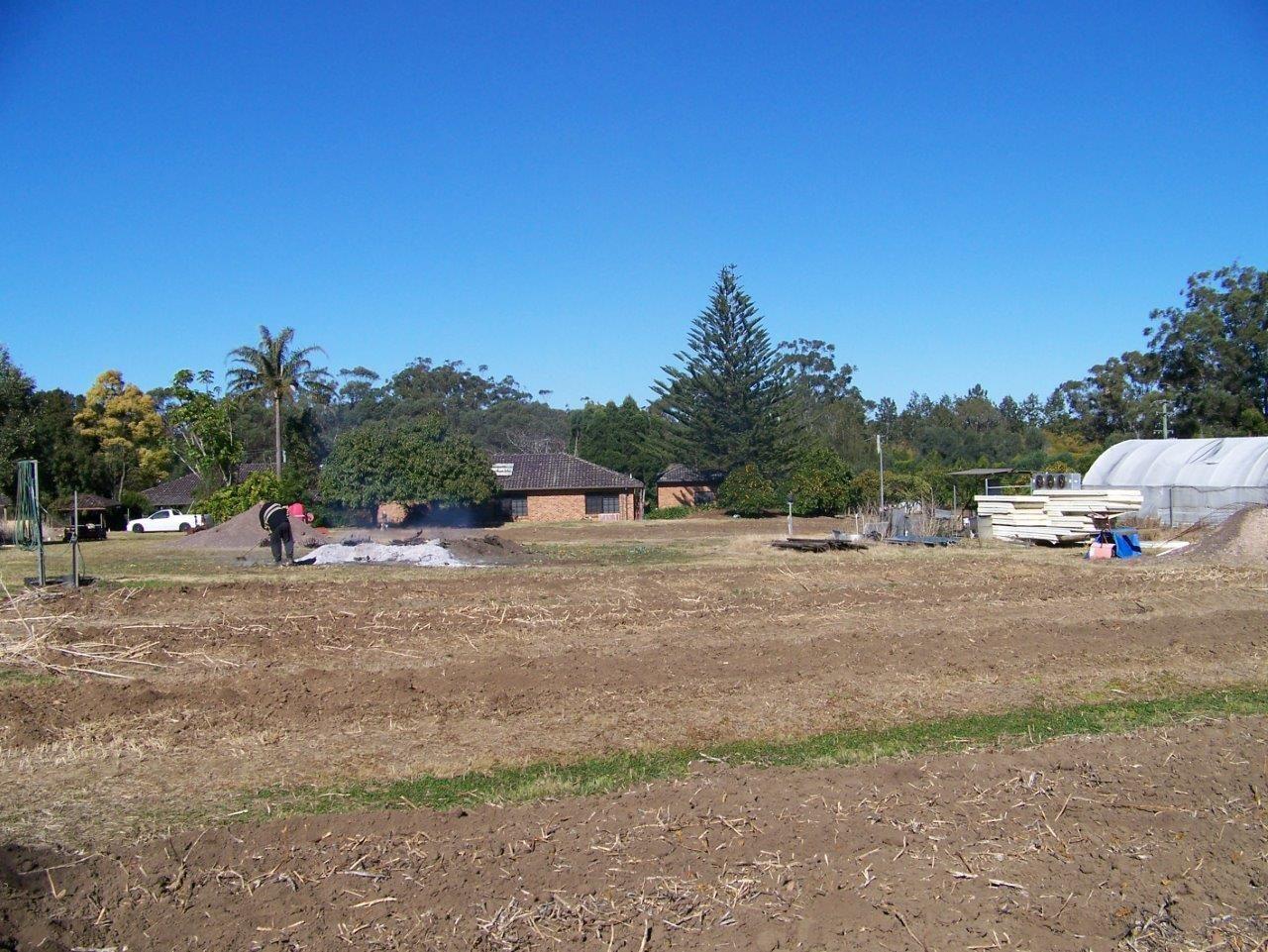 4 Blueberry, Medowie NSW 2318, Image 1