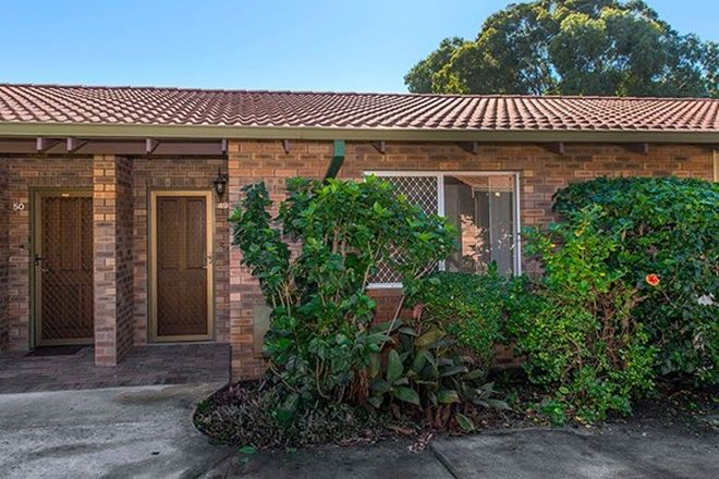 Picture of 49/10 Houtmans Street, SHELLEY WA 6148