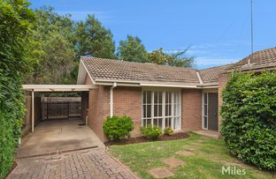 Picture of 2/36 Thornton Street, Macleod VIC 3085
