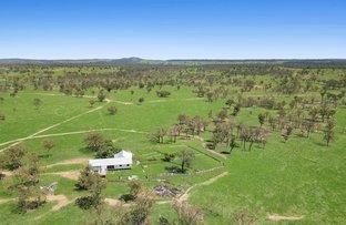 Picture of 7958 Toowoomba-Karara Road, Karara QLD 4352